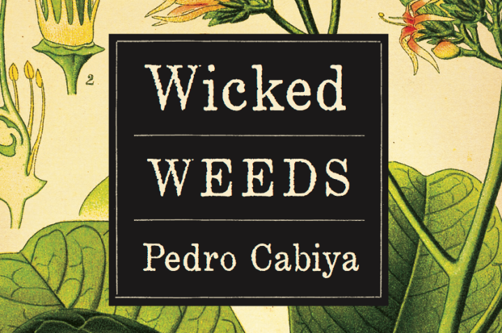 Wicked Weeds / Pedro Cabiya