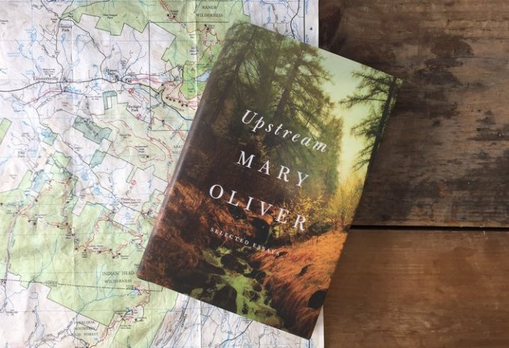Upstream / Mary Oliver