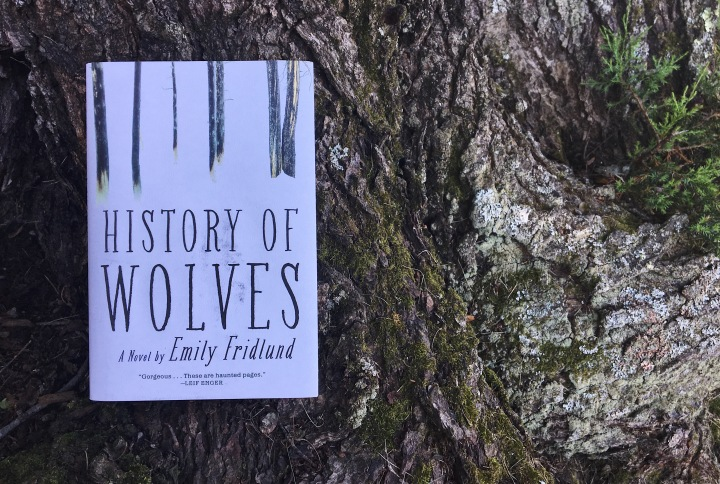 History of Wolves / Emily Fridlund